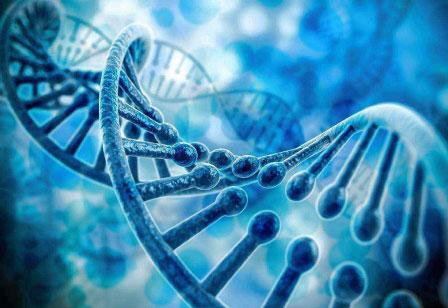 生物科技工程有限公司